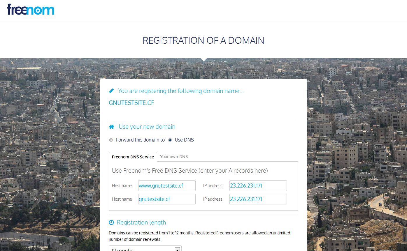 cheap domain names cpanel and plesk web hosting